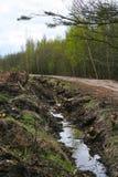 国家村庄路风景 车轮的轮胎踩 一条土气乡下公路在普斯克夫地区,俄罗斯, 库存图片