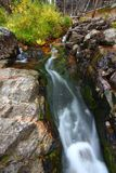 国家森林小河小瀑布 免版税图库摄影
