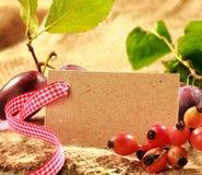 国家背景用野玫瑰果和李子 免版税库存照片