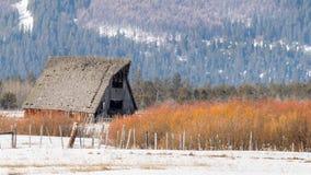 国家谷仓在爱达荷冬天用橙色杨柳棍子和雪 库存照片