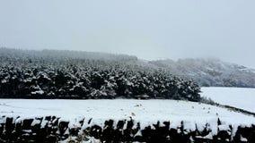 国家达翰姆第一雪 免版税库存图片