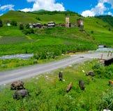 国家风景在Davberi 免版税库存照片