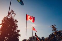 国家飞行旗子行日落天空背景的 国家(地区)不同的标志 国家联合  加拿大标志 免版税库存照片