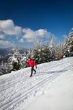 国家(地区)交叉人滑雪年轻人 免版税库存图片