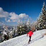 国家(地区)交叉人滑雪年轻人 免版税图库摄影