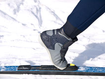 国家(地区)交叉北欧滑雪 免版税库存照片