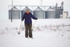 国家(地区)交叉滑雪 免版税图库摄影
