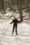 国家(地区)交叉滑雪 免版税库存照片