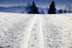 国家(地区)交叉空的滑雪跟踪 免版税图库摄影