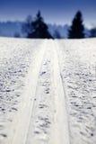 国家(地区)交叉空的滑雪跟踪 图库摄影