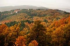 国家(地区)森林房子 免版税图库摄影