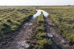 国家(地区)泥泞的路 库存图片