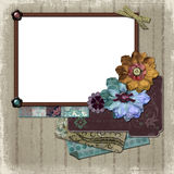 国家(地区)花卉框架照片 皇族释放例证