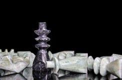 国王击败所有其他在下棋比赛 免版税库存照片