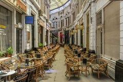 国王埃及咖啡馆谷  库存照片