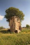 国王帕福斯,塞浦路斯的坟茔 在背景o的废墟 图库摄影