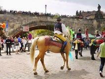 国王的乘驾,文化仪式,联合国科教文组织 库存图片