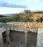 国王的盾立场searchaeological站点坟茔Cyprusa危险警告Pafos共和国的在夏天挥动 库存照片