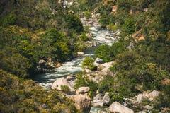 国王的Canyon Preserve,加利福尼亚美丽如画的山河 松鸡爱本质歌曲通配木头 库存图片