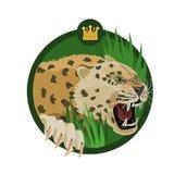 国王豹子咆哮声 库存图片