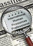 国际人力资源专家被要 3d 免版税库存照片