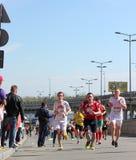 国际半马拉松 库存照片