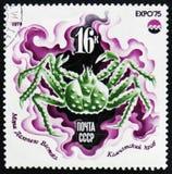 国际博览会`商展` 75 `的图象,堪察加螃蟹,大约1975年 图库摄影