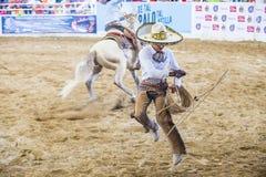 国际墨西哥流浪乐队& Charros节日 库存照片