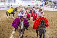 国际墨西哥流浪乐队& Charros节日 免版税库存图片