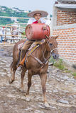 国际墨西哥流浪乐队& Charros节日 免版税图库摄影