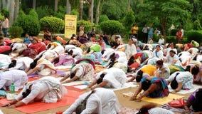 国际瑜伽天2017年 库存图片