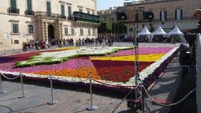 国际花卉天 库存图片