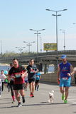 国际马拉松 免版税库存照片