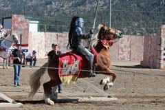 国际马背射击的竞争 库存图片