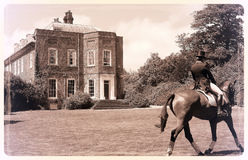 国际驯马 免版税库存图片