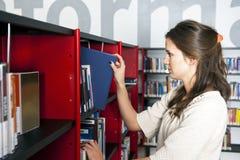 图书管理员 免版税库存图片