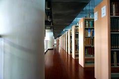 图书馆和书 免版税库存照片