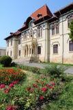 图书馆在罗马尼亚 免版税库存照片