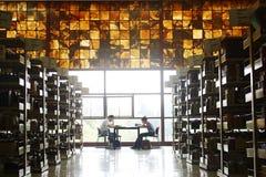 图书馆墨西哥国民大学 免版税库存图片