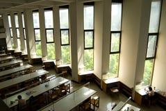 图书馆大学视窗 免版税图库摄影