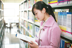 图书馆读取妇女年轻人 库存照片