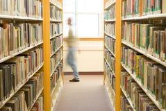 图书馆赞助人 免版税库存图片