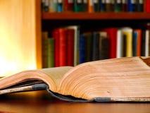 图书馆 免版税图库摄影