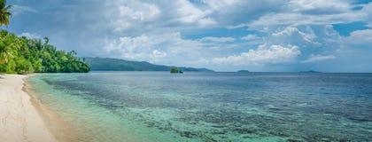 巴图利马近的生物多样性手段, Gam海岛,西部Papuan,王侯Ampat,印度尼西亚 库存照片