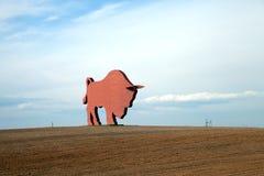 图北美野牛(Zubr)在从米斯克的路线向布雷斯特 免版税库存照片