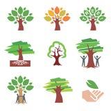 图标结构树 皇族释放例证
