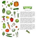 图标设置了蔬菜 免版税库存图片