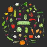 图标设置了蔬菜 免版税库存照片
