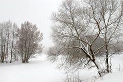 图画冬天 库存图片