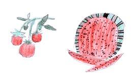 图画孩子莓s西瓜 免版税库存照片